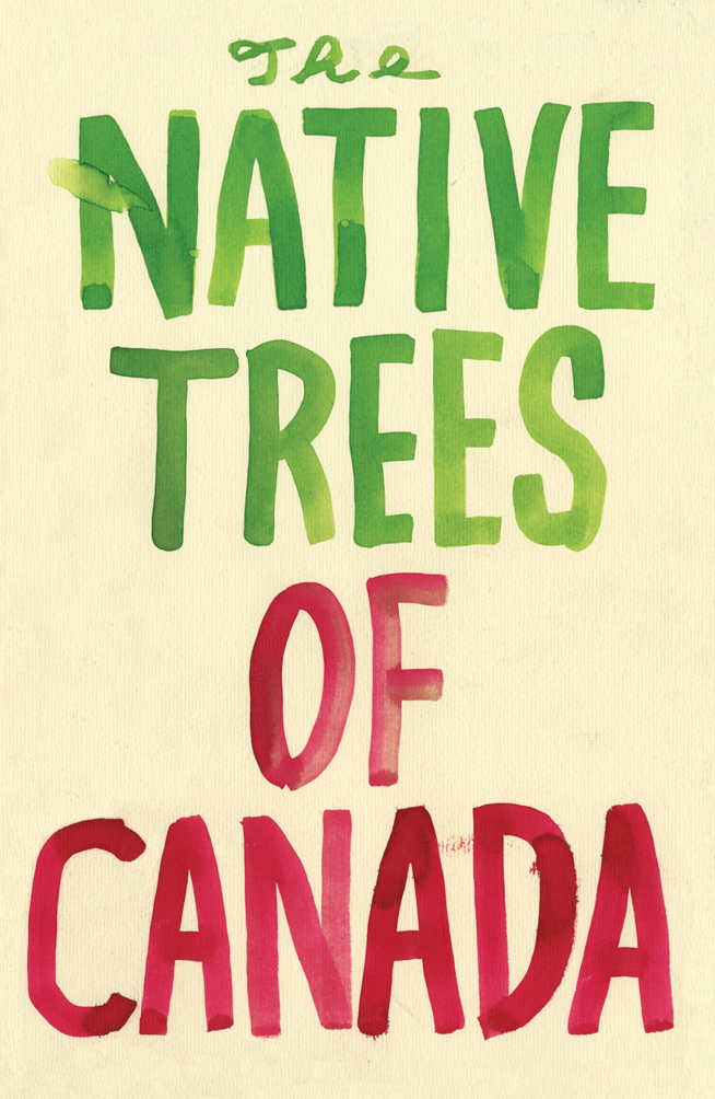 native_trees_large_cover