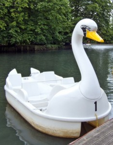 A 4-seater swan pedalo