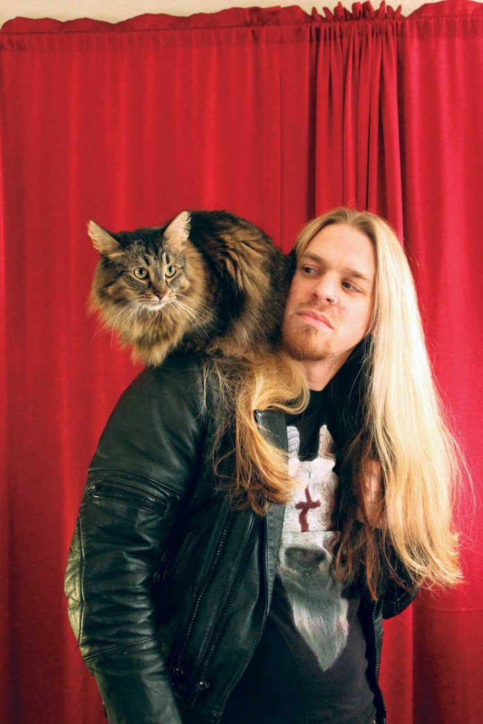 Aub-Driver-Metal-Cats.jpg