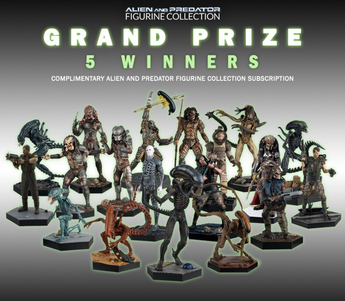 0 grand prize- avp collection