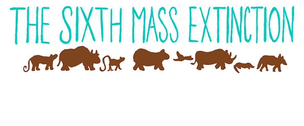 The Sixth Mass Extinction