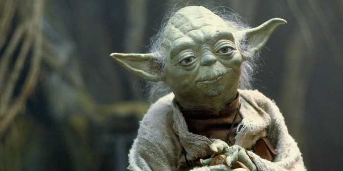 Cute beings in Star Wars: Yoda