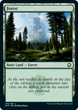 Magic the Gathering Adventures in the Forgotten Realms Dungeons and Dragons Forest