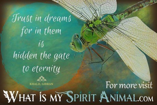 inspirational spiritual love funny animal quotes sayings