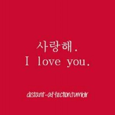 korean quotes tkq thekoreanquotes twitter