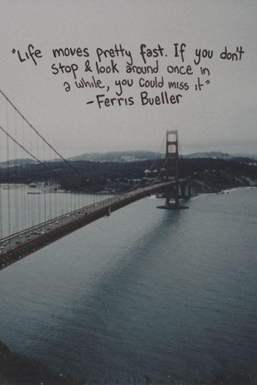 quotes about bridges and life reizenjosschmitz