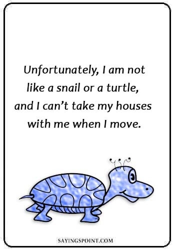 Turtle Quotes Comicspipeline Com