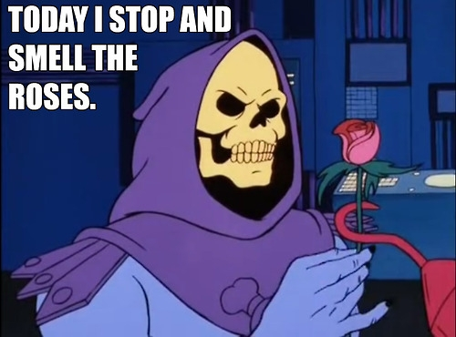 skeletor inspiration quotes for everyone album on imgur