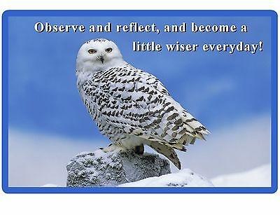 wise white snow owl quote refrigerator locker tool box magnet ebay
