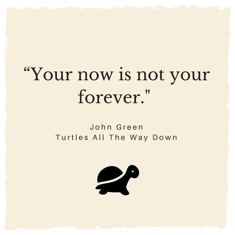 your now is not your forever john green turtles all the