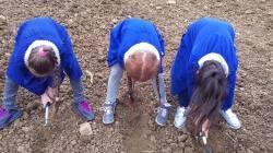 bambine-nel-campo-di-grano
