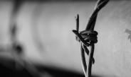 CJP publica Nota Técnica sobre a COVID-19 no Sistema Penitenciário do Distrito Federal