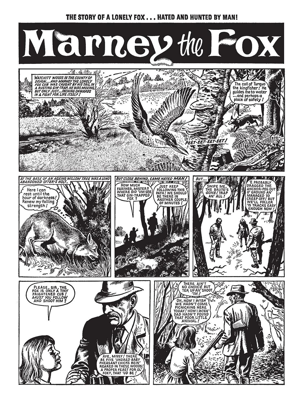 MARNEY THE FOX (UK) - Comix Asylum