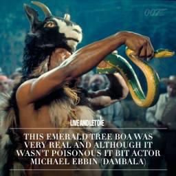 Le Boa émeraude était bien réel.Bien que non venimeux, il a mordu l'acteurs Miacheal Ebbin (Dambala)