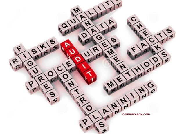 Audit Procedures and Techniques