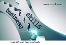 Critical Small Business Skills