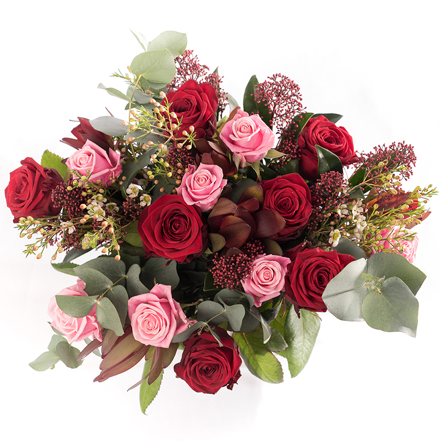 bunch of red and pink roses photographed from above