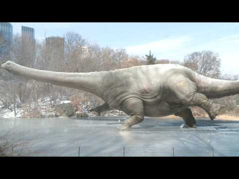 Dinosaur | Denver Museum of Nature & Science Commercial Song