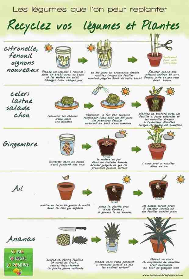guide-conservation-aliments