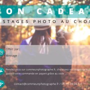 Bon cadeau 2 stages photo