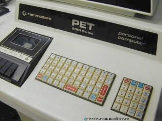 pet-2001