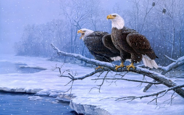 Great Eagles In Winter