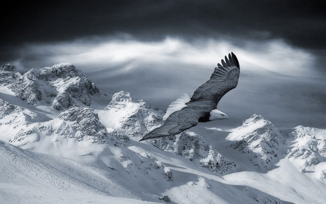 Eagle & Winter Mountains