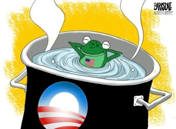 The Stupid Frog