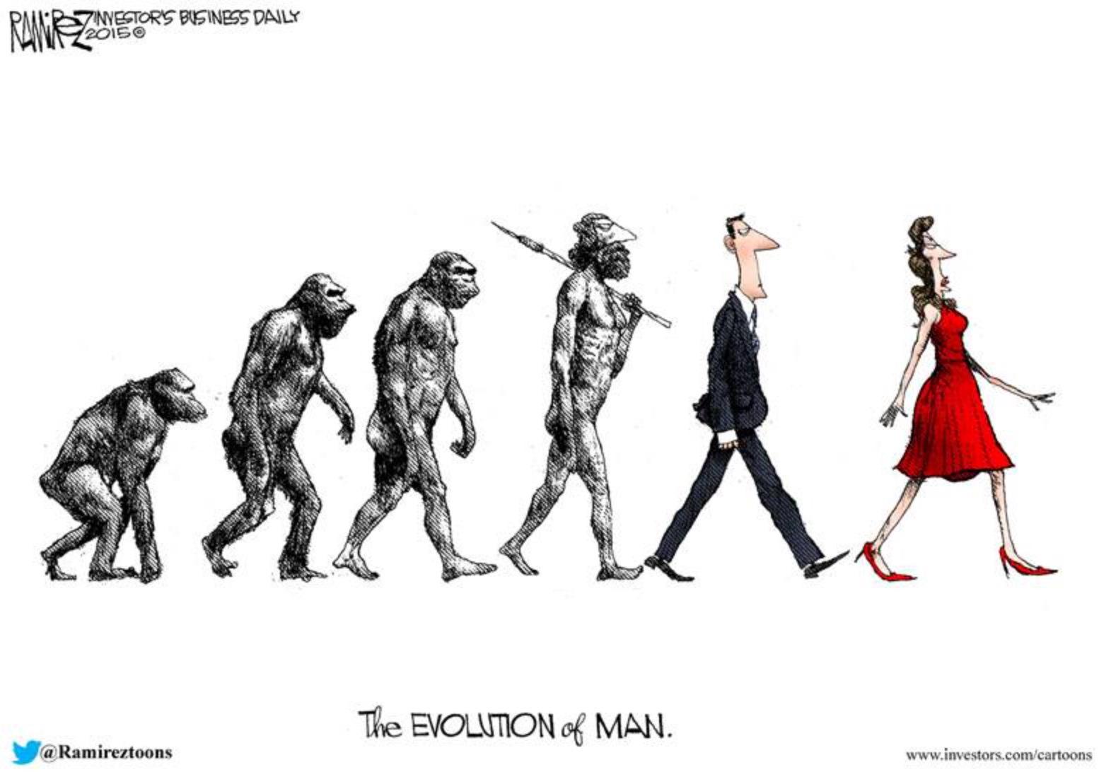 Sarah Palin Cartoons