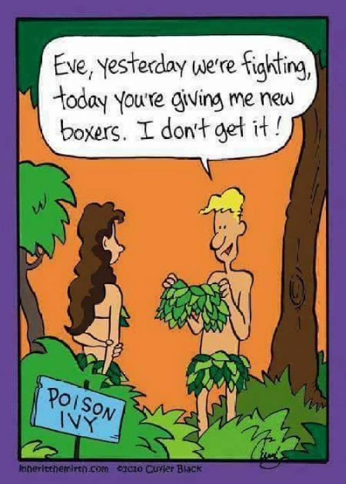 New Boxers
