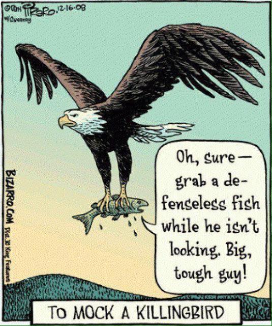 Defenseless Fish