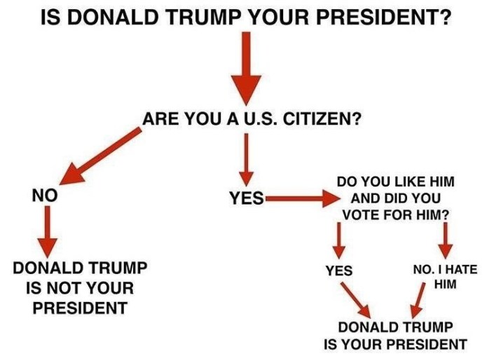 helpful-chart-to-figure-out-if-donald-trump-is-your-president