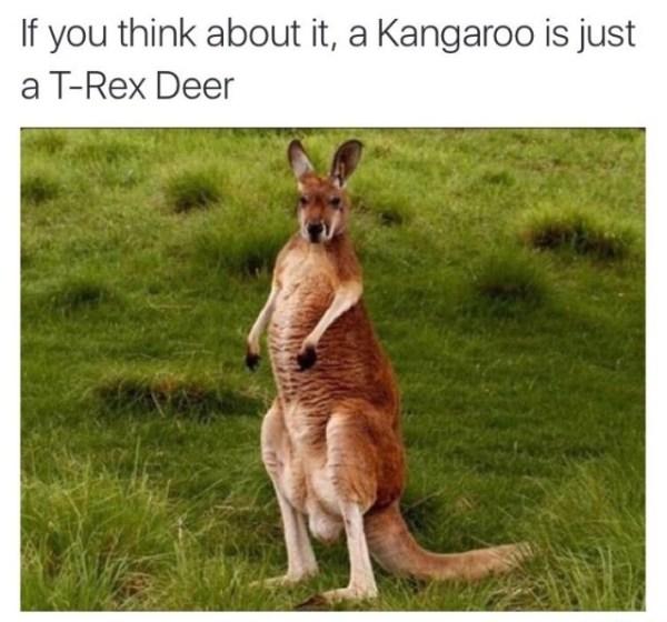 t-rex-deer