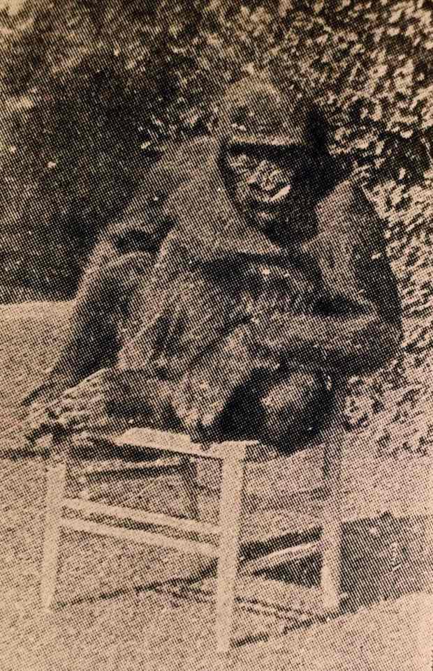 A Gorilla Named John Daniel