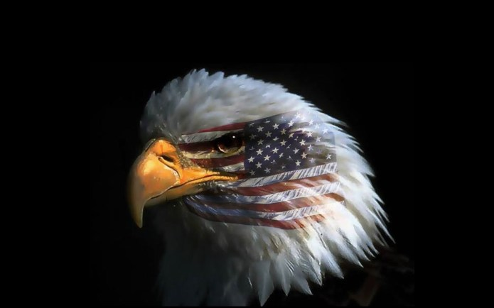 Wallpaper Of The Day: Eagle Eye American Flag