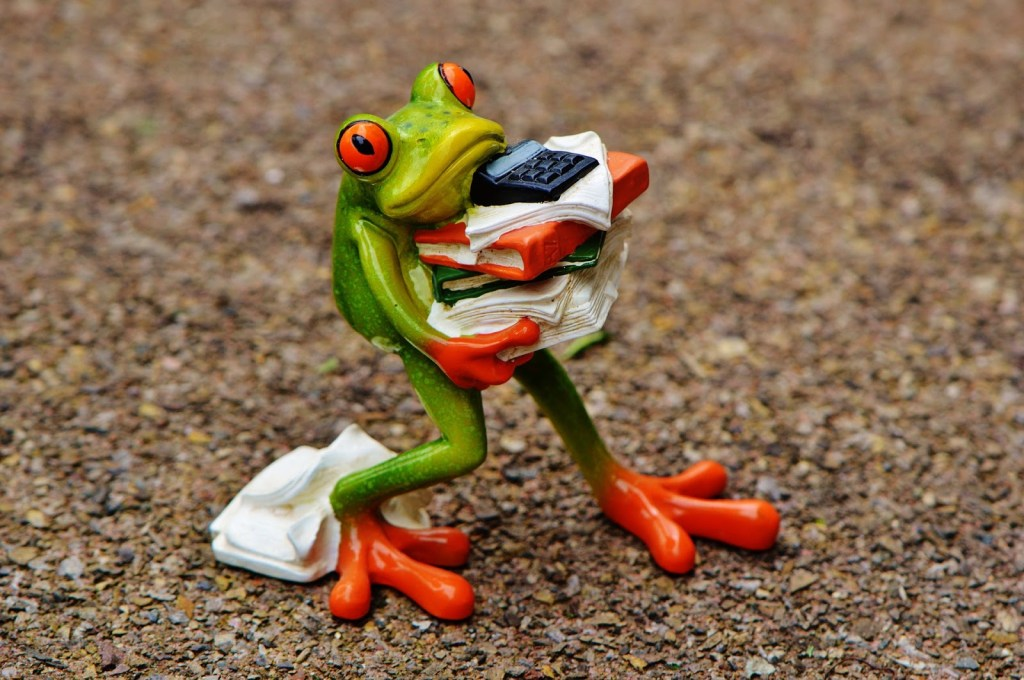 frog with piles of debt