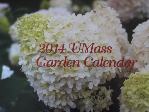 Not Too Late For Umass Garden Calendar