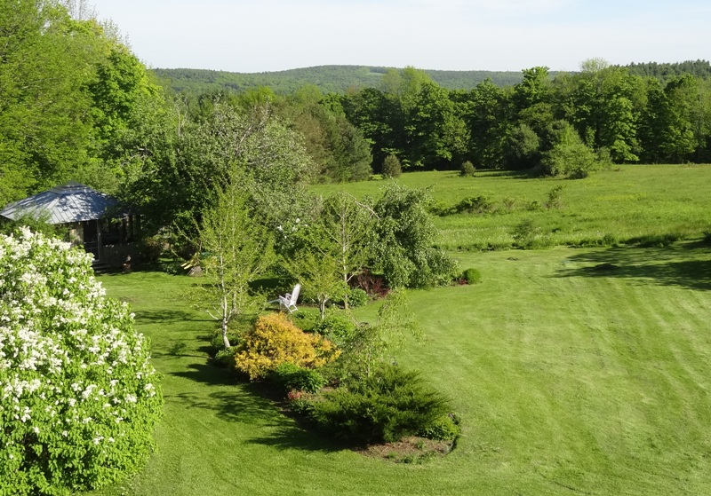 View from the Bedroom Window June 1, 2014