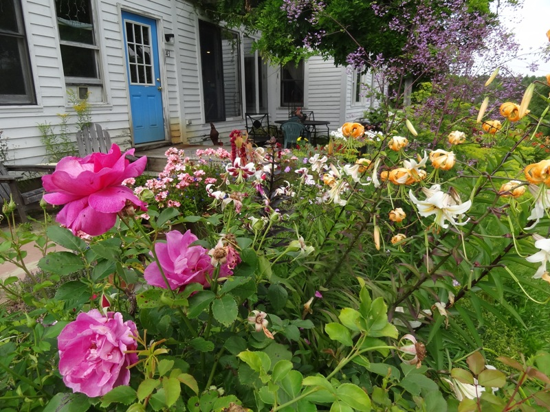 Roses and lilies, mostly