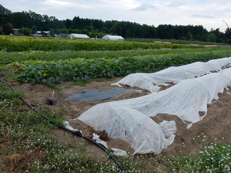 UVM Horticultural Research Center