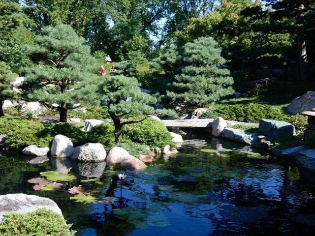 Water in a Japanese garden