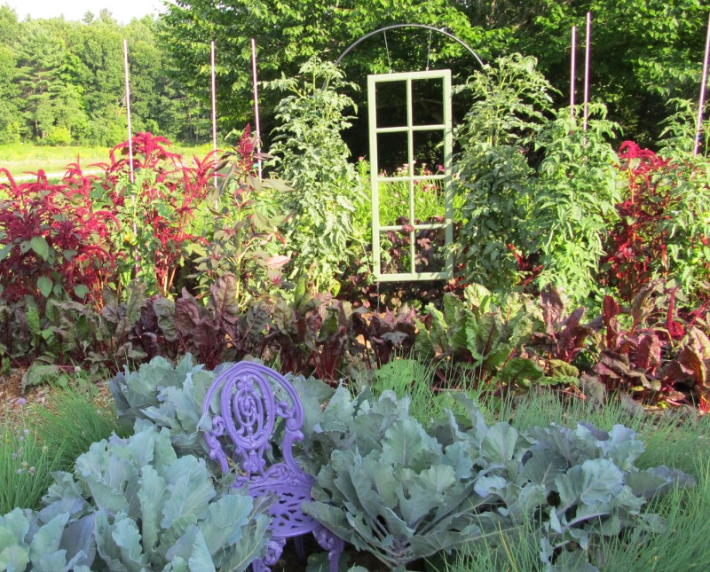 Creative plants supports at Tower Hill Botanic Garden