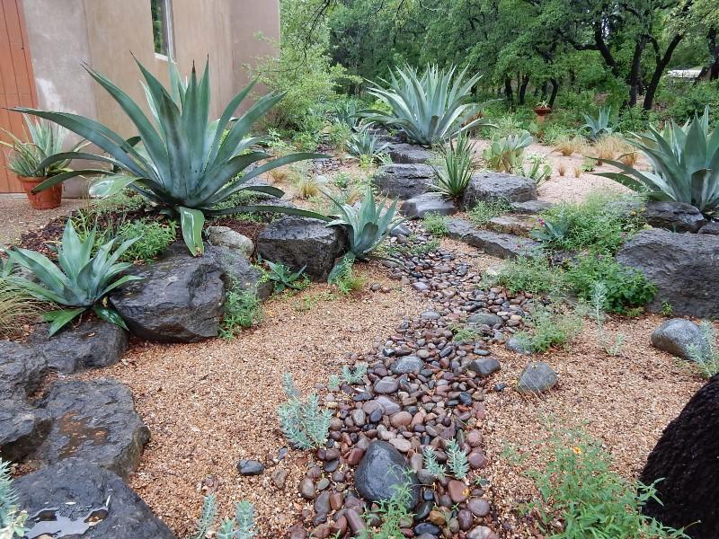 Stocker's Entry garden in Austin