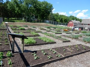 Seed Savers Exchange, Decorah Iowa