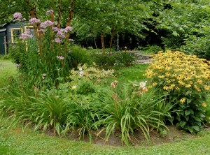 Rudbeckia, daylilies and phlox