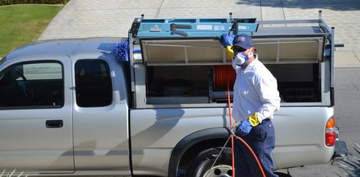 Pest control service for your business