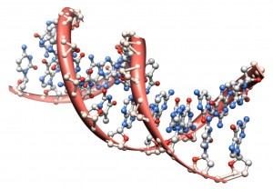 DNA's 4 letter codes produce 3 billion combinations