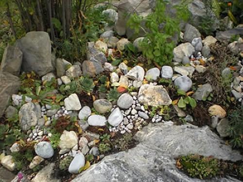 """Petite rocaille """"Koïnonia"""" dans le jardin de la Cure..."""