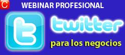 webinar profesional twitter para los negocios redes sociales community internet social media enrique san juan