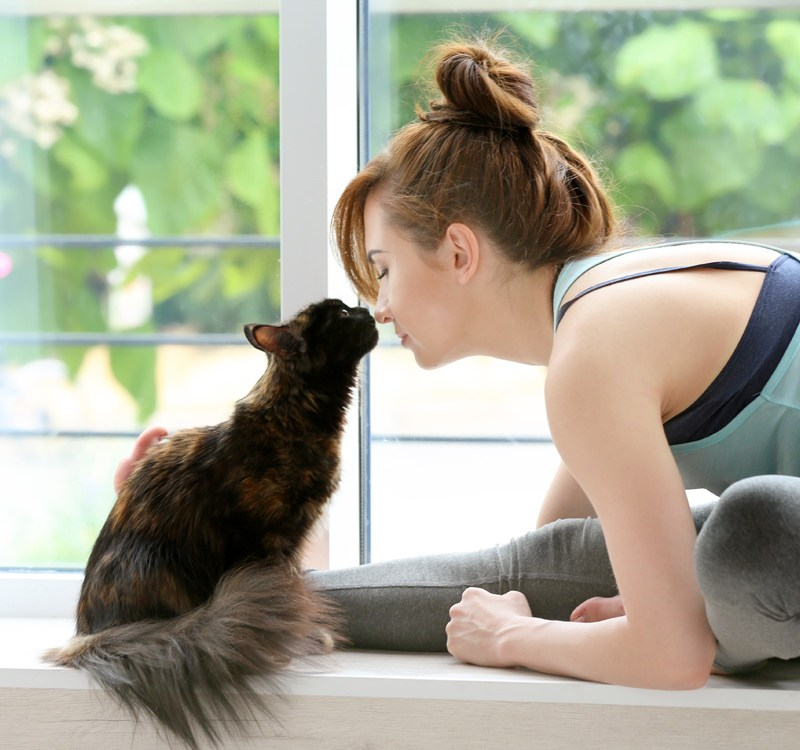 Athletic Woman Practicing Yoga with an Affectionate Cat